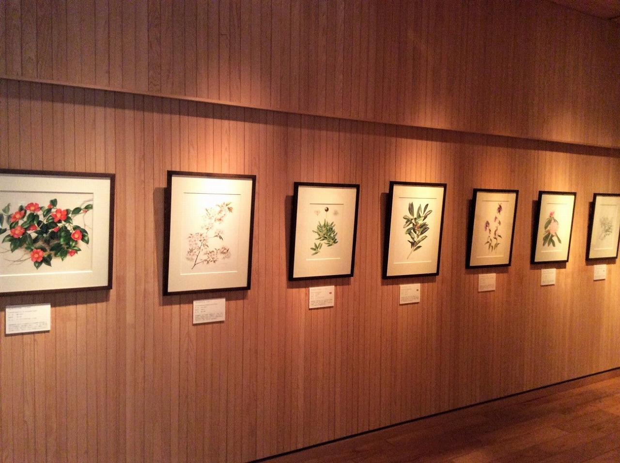 Installation view. All photos courtesy Akiko Enokido.