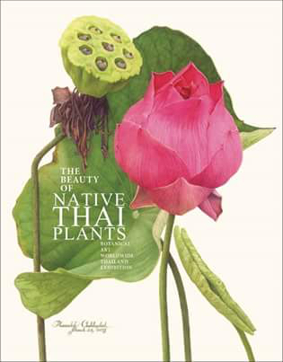 BAWW Catalog thailand.jpg