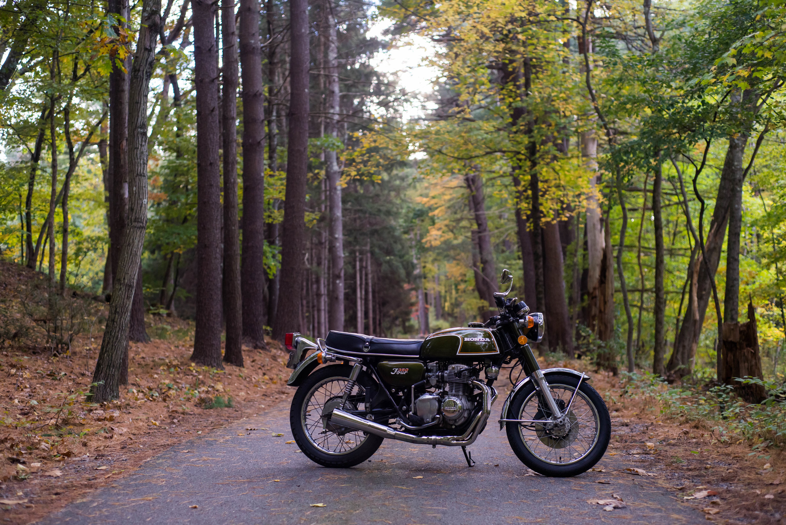 Fall in New England, Sudbury MA. Photo by Kim Maroon