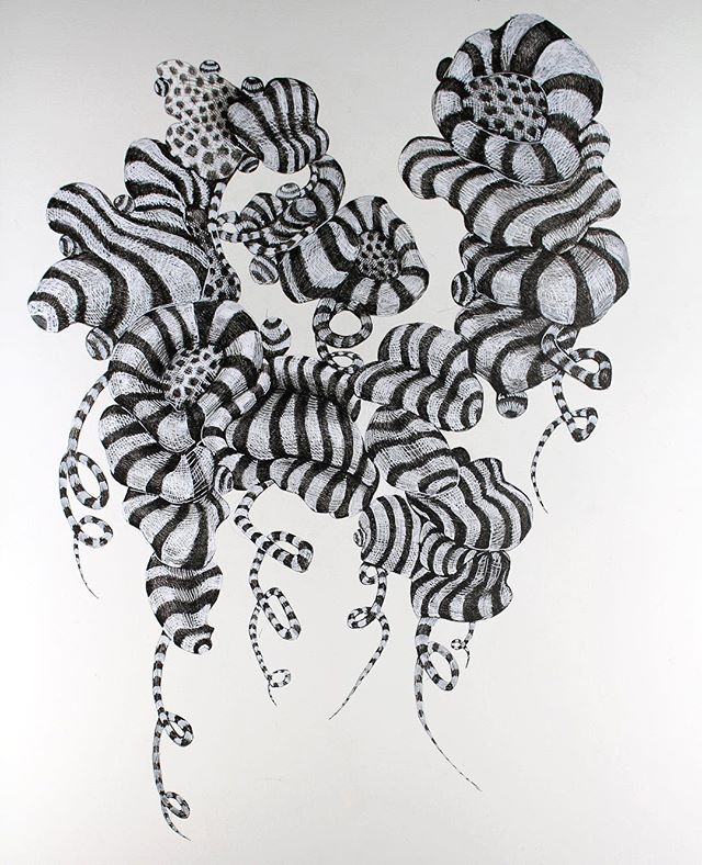 #drawing #floating #workonpaper #contemporaryart #nature #science #organic #losangeles #inkonpaper #black #white #blackandwhite #spiral #space #art