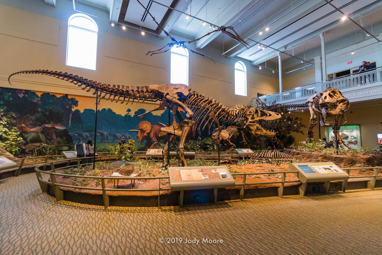 """CM 9380 - the holotype Tyrannosaurus rex (left) - along with a cast of Museum of the Rockies' MOR 980 """"Peck's rex"""" (right) and a fallen hadrosaur."""