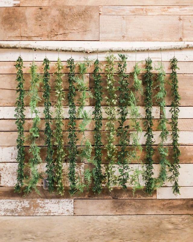 Well hello greenery 👋 #photobackdrop #greenerywall