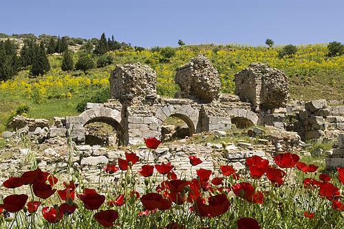 Greco Roman Ruins