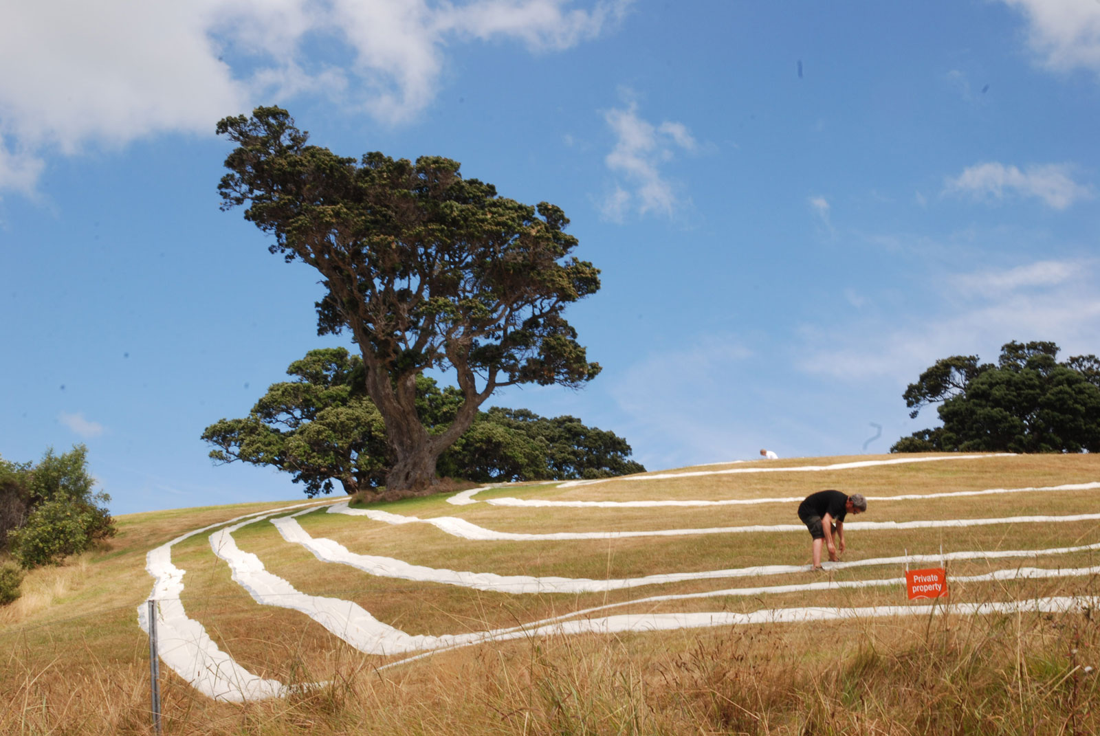 Who's benefit this land? NZ as private property on Waiheke Island Sculpture Trail. The epitome of NZ tourism: landscape, wine and culture.