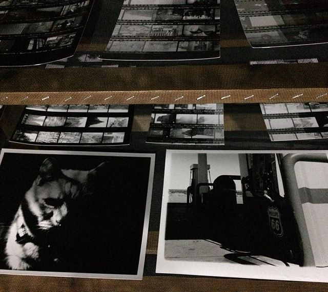 @mr_smallwood & @casecodd first contact sheets and prints @nocdarkroom. Can't wait to see what they do next 🙌 • • • #nocdarkroom #enginebiddeford #filmliveshere #blackandwhitephotography #sharewhatyoulove #firstprint #sprintchemistry #ilfordpaper #contactsheet #teststrips #biddeford