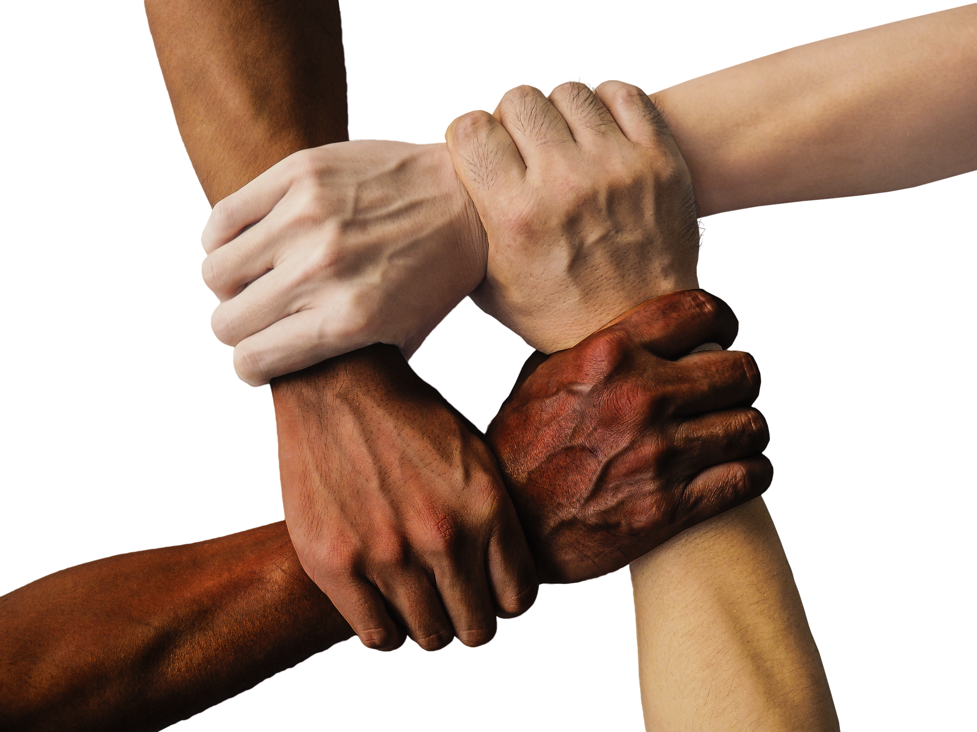 Working Family Solidarity's mission is to attain economic security for workers of all backgrounds by educating workers on employee rights, decreasing racial tension, and building racial alliances. -