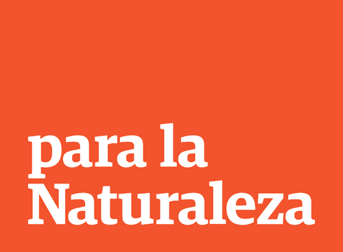 pln-logo-res.png