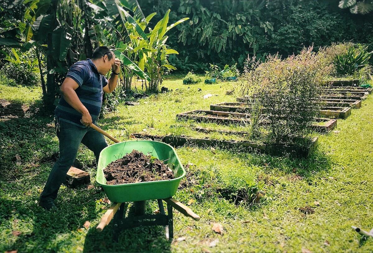 Cedrick Hernández, teacher at the Raúl Ybarra school, working in the school garden.