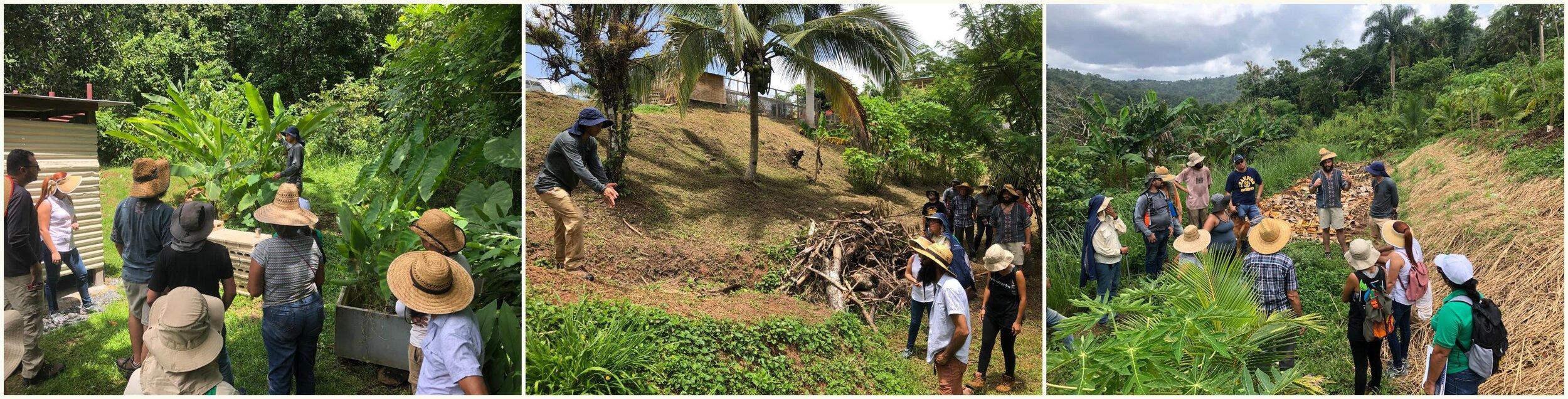 Agricultores de la red de WCK y líderes comunitarios participan de talleres de manejo de agua en    Plenitud PR   .