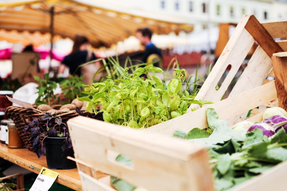 Karmelitermarkt Hotspot.jpg