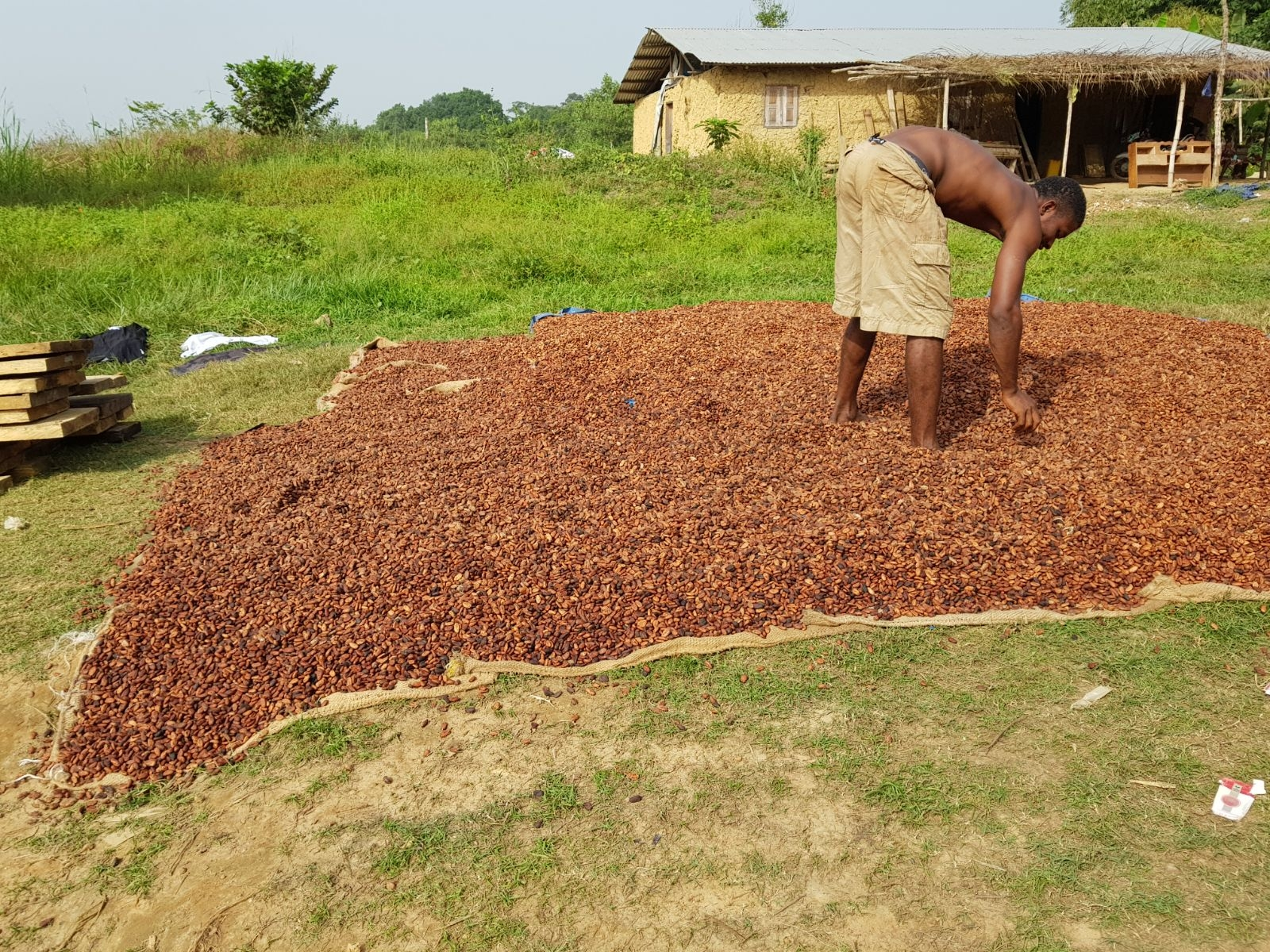 SLFND's Rice Milling  Social Enterprise Co-op  provides training and employment for Mondema villagers