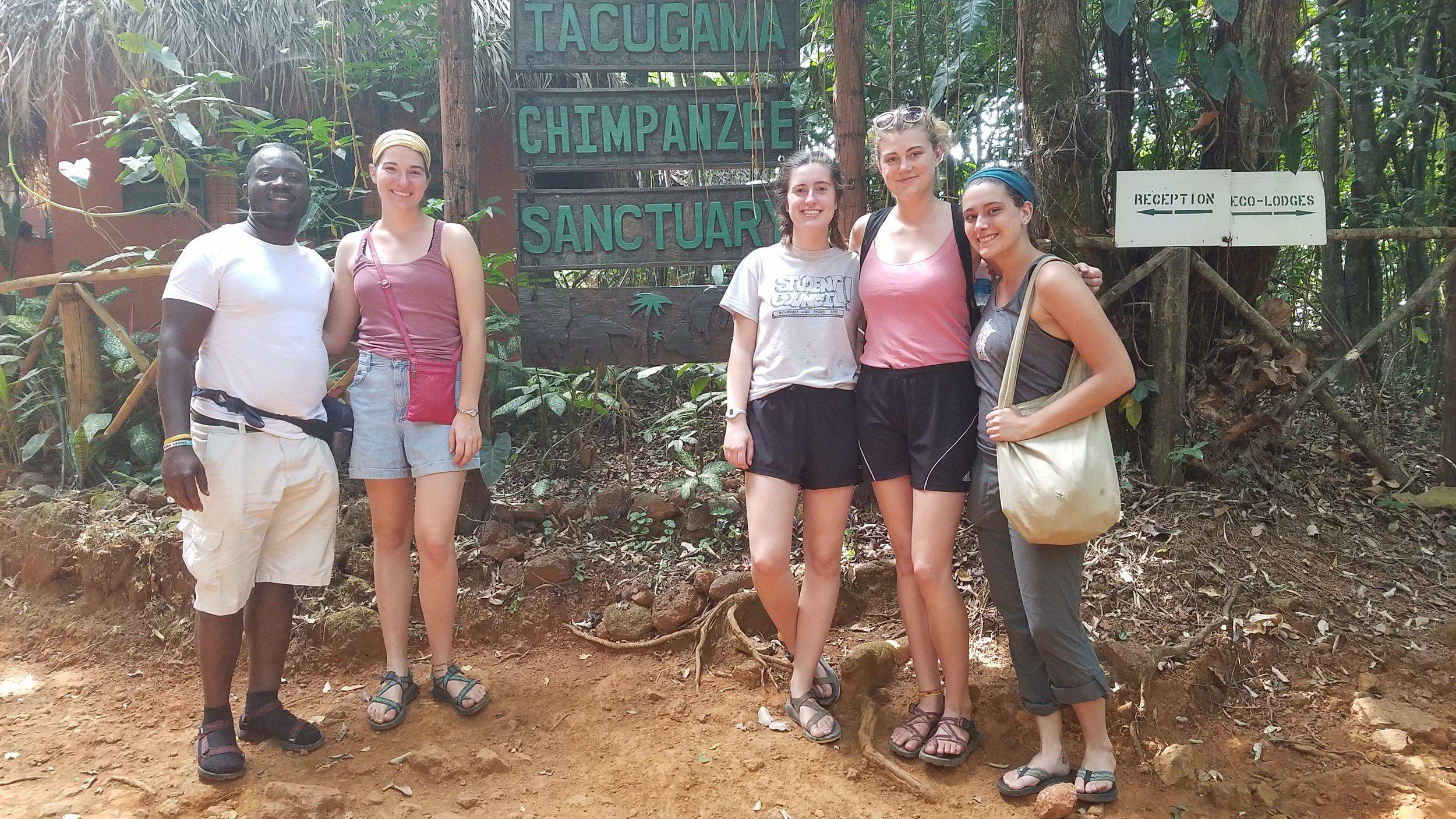 Visit Tacugama Chimpanzee Sanctuary