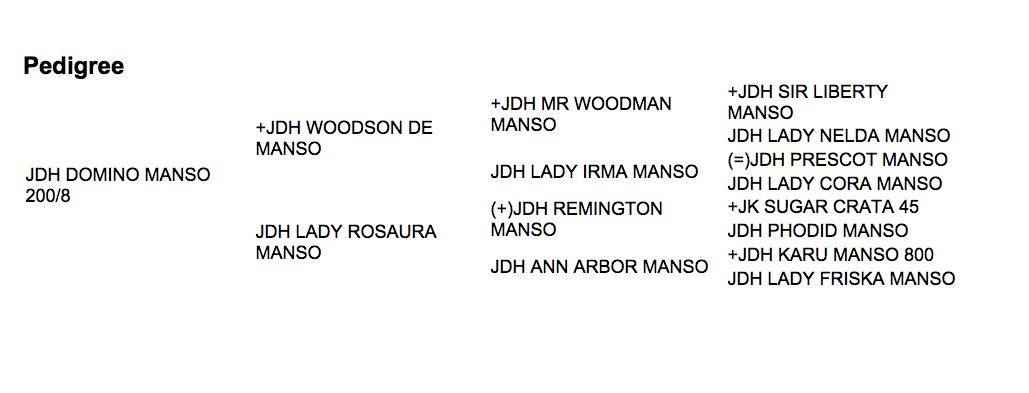 JDH RAYMOND DE MANSO 5/8