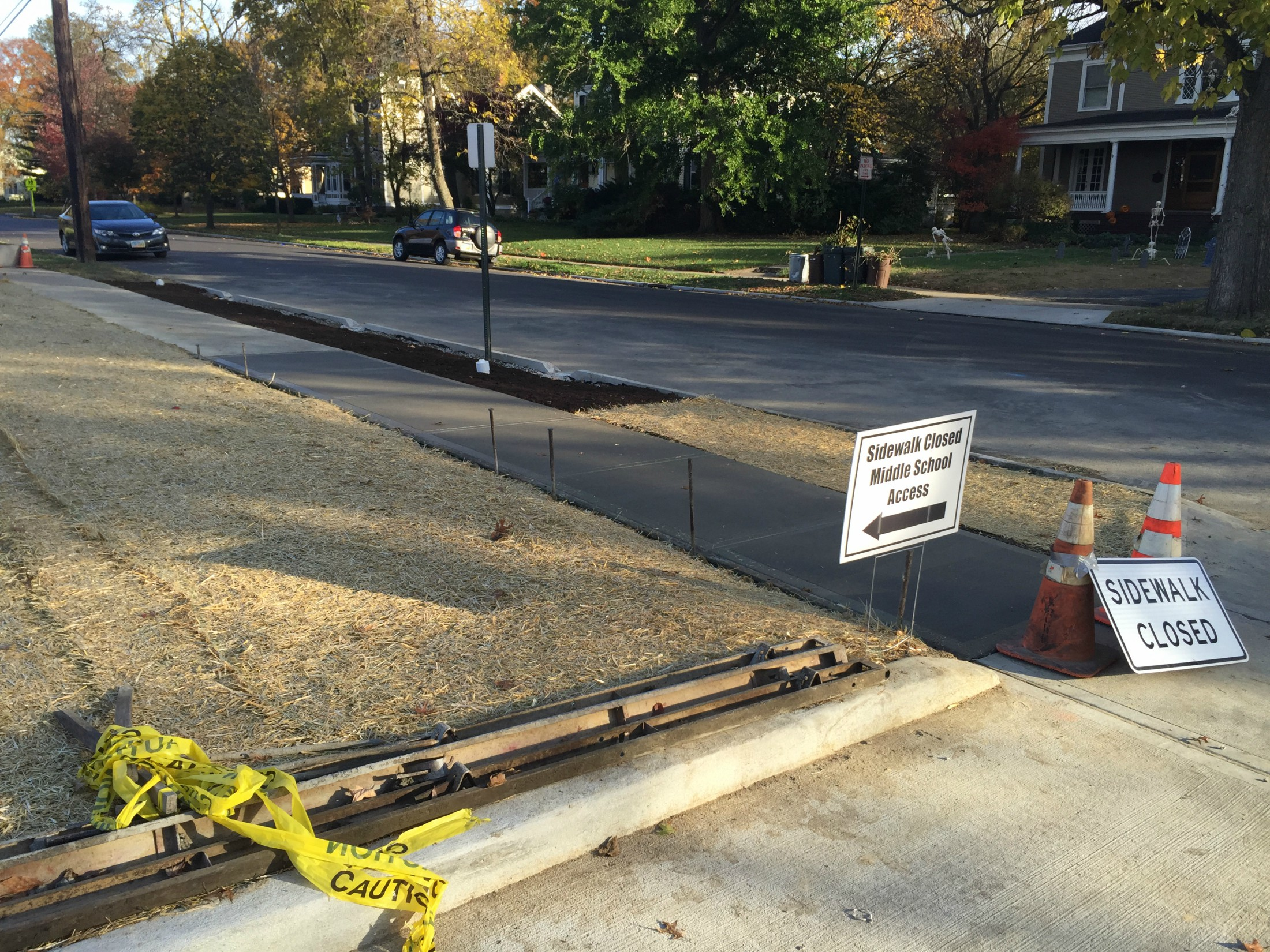 Wyoming Avenue Tree Trench -