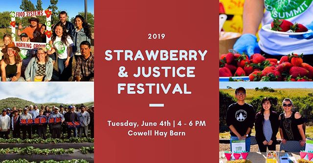 Yours truly will be out Tabling at the Strawberry and Justice Festival today! 🍓✊🏽🍓 Come on out to this FREE event that examines many of the social and environmental issues behind one of the Monterey region's most important agricultural crops. There will be live music, fresh organic strawberries, and a dynamic panel of leaders that will discuss local community injustices as well as worker oppression in strawberry production.
