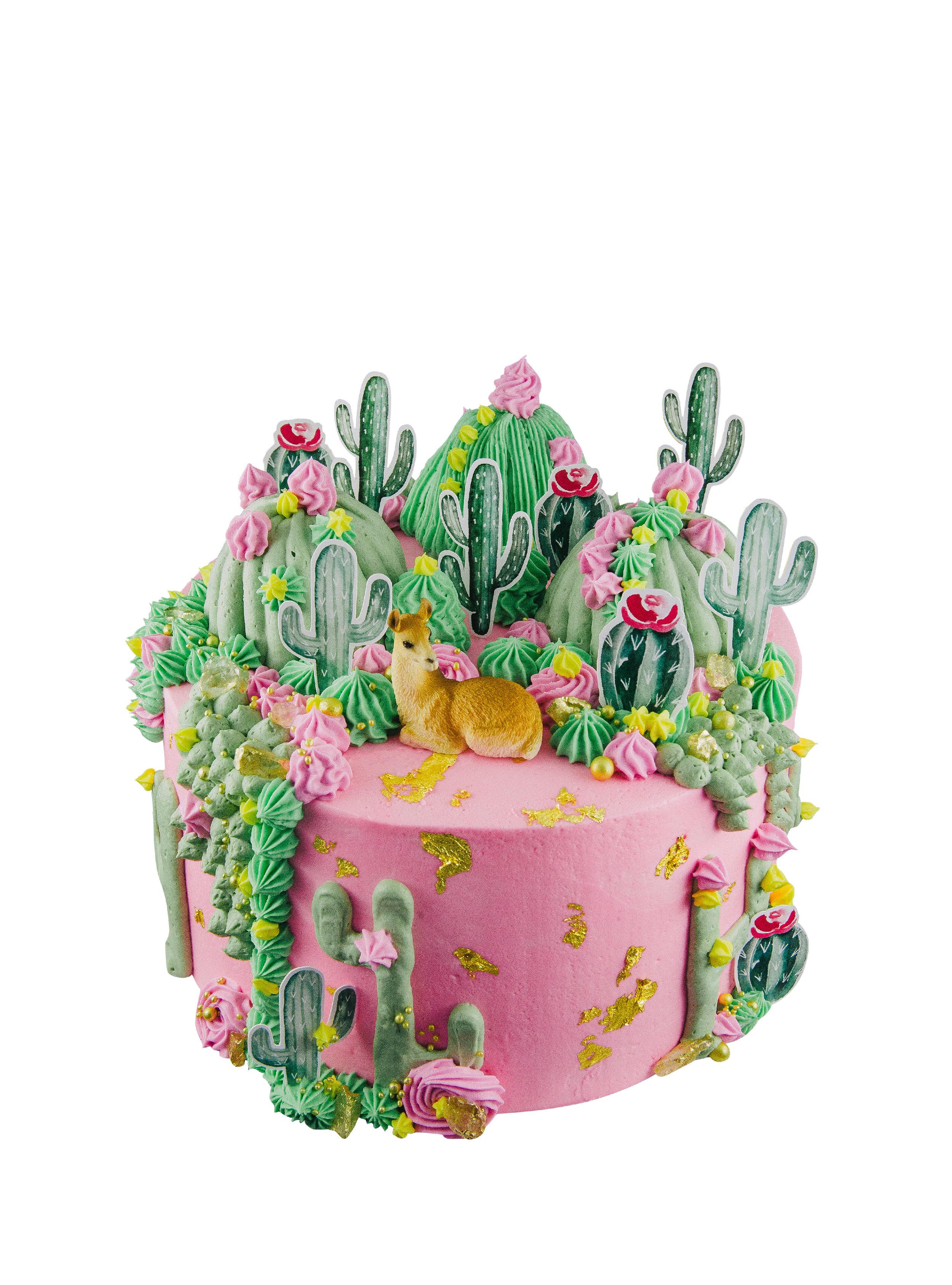 SUCCULENT CAKE -