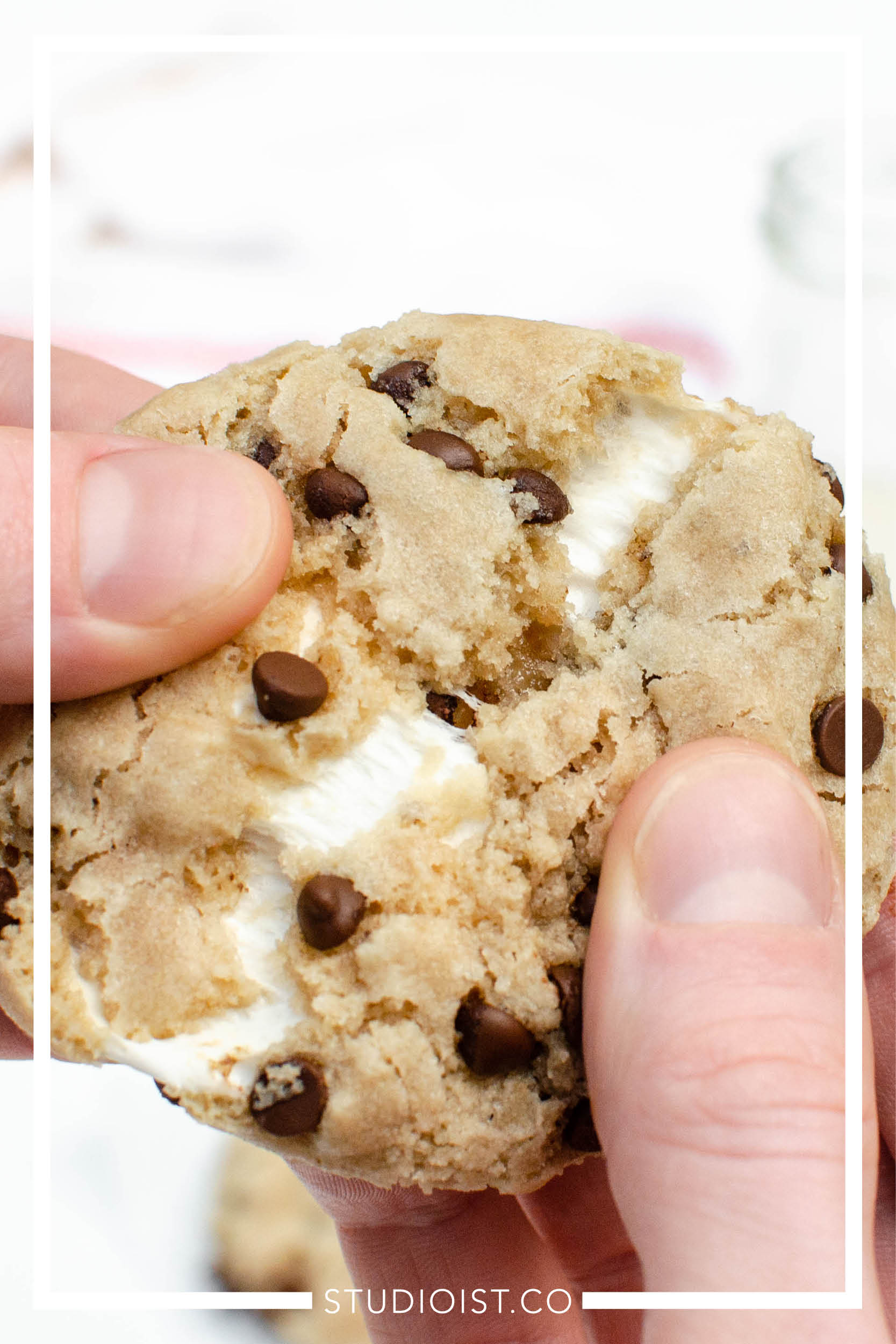 Vegan GF Smore Cookies.jpg