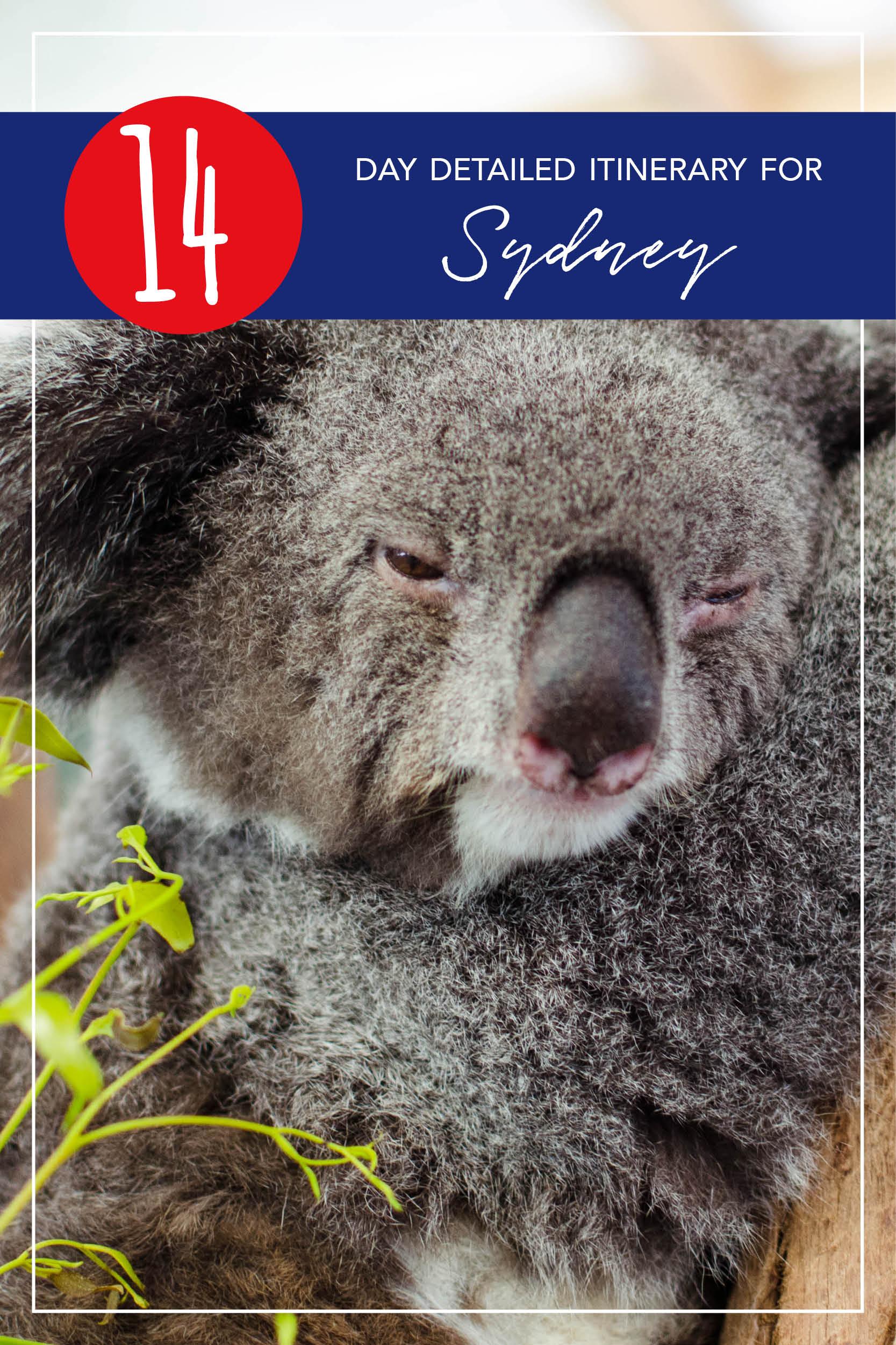 Travel Itinerary - 14 Days in Sydney Australia - Detailed Koala.jpg