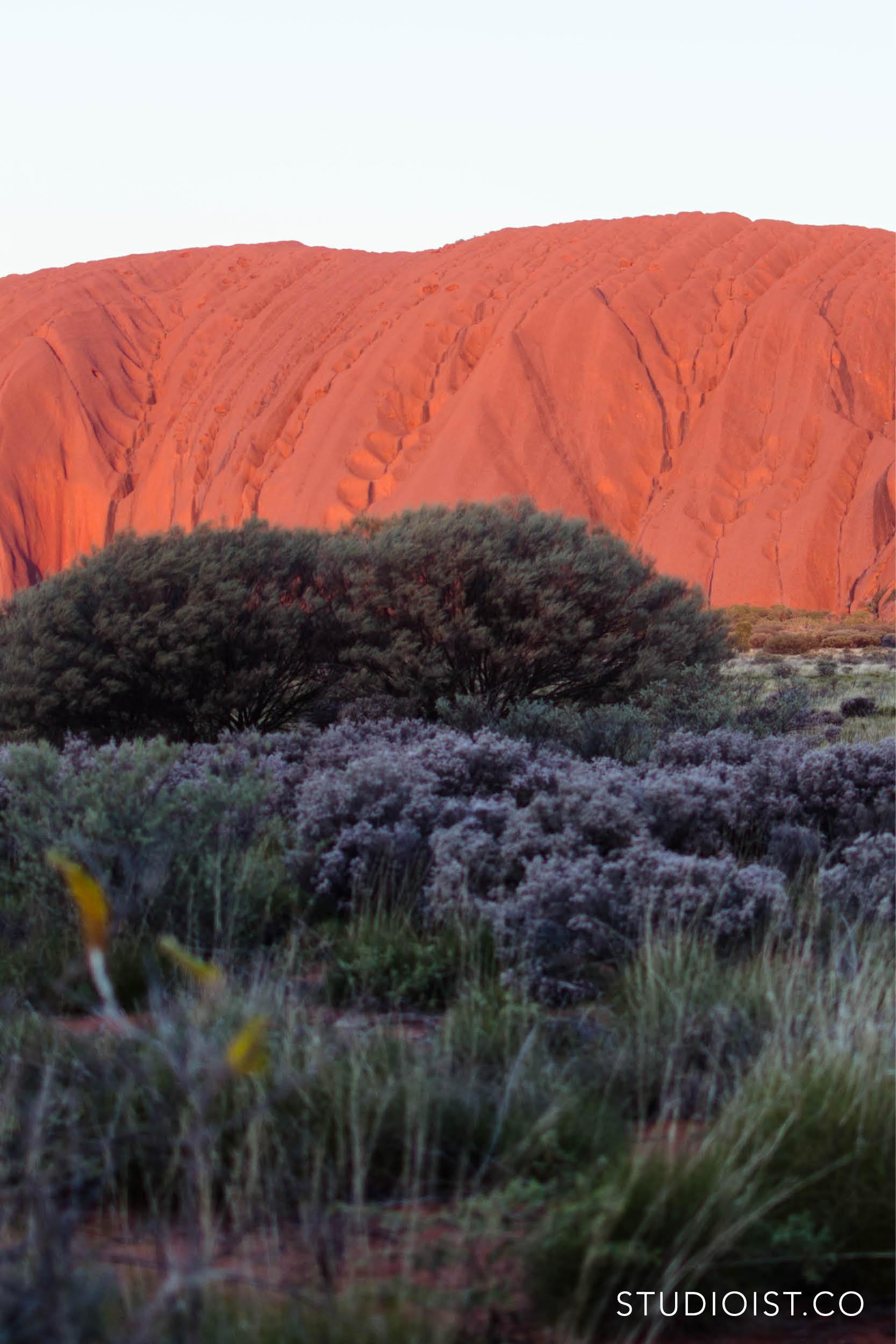 Studioist_Pinterest Design Travel_AustraliaExperiences2.jpg