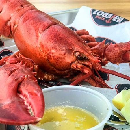 lobster2.png