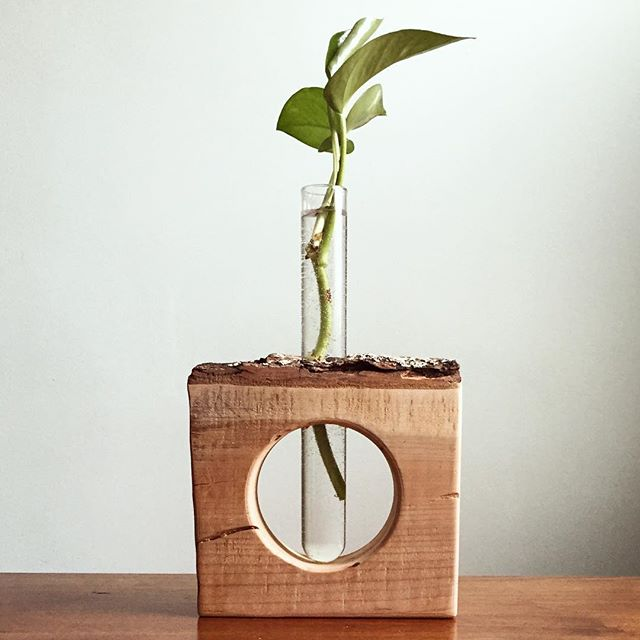 Our latest product added to our Etsy shop, the propagation station! Made with live edge cherry wood.