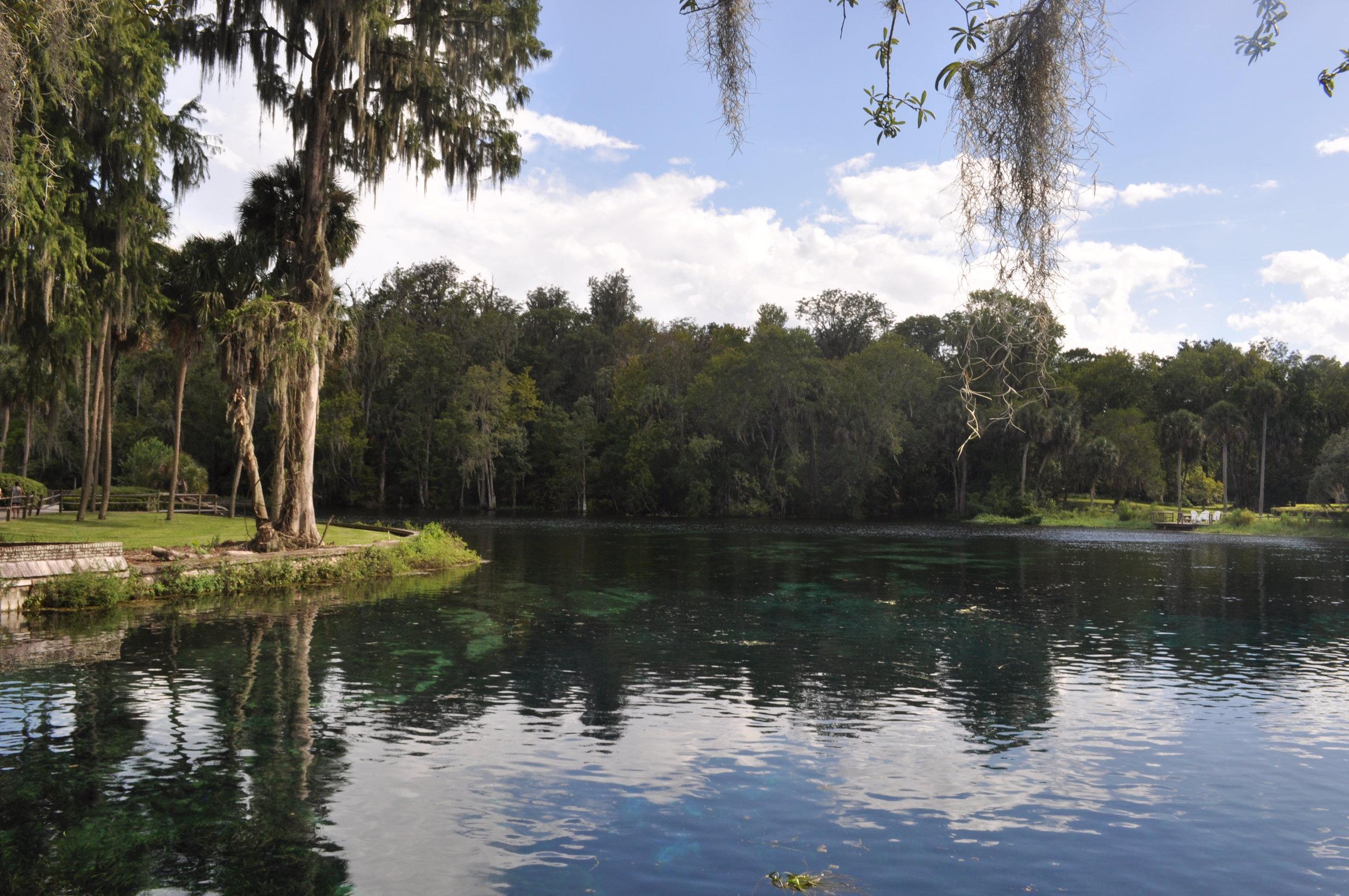Silver Springs River, Ocala, Florida