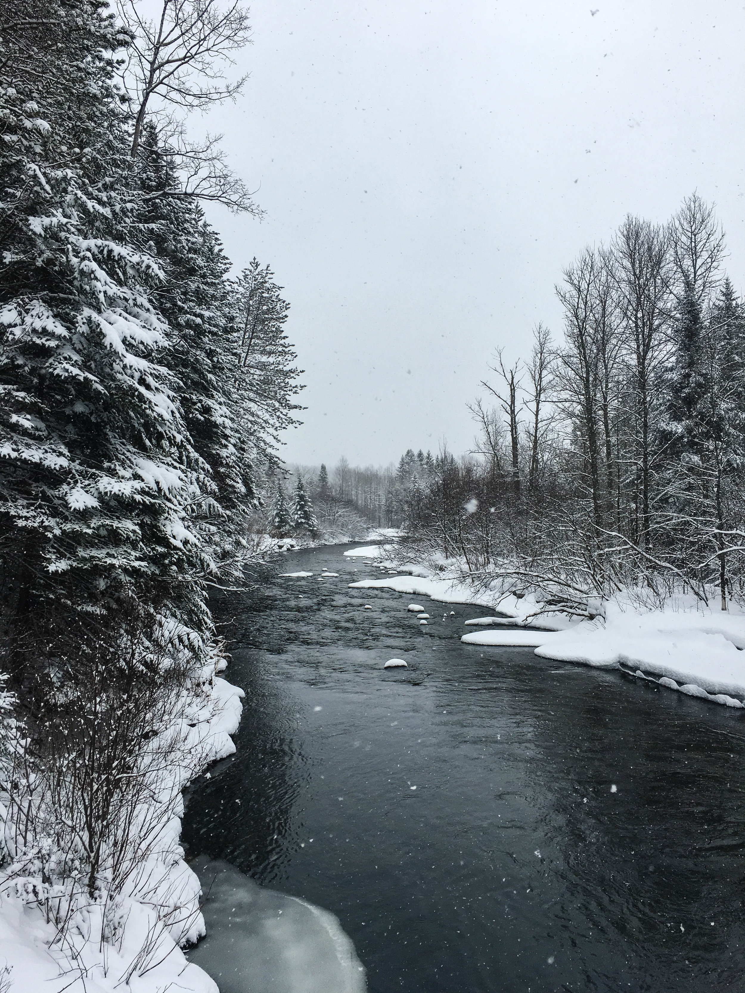 Walk in the mountains in Coaticook. There is a river, evergreens and a lot of snow