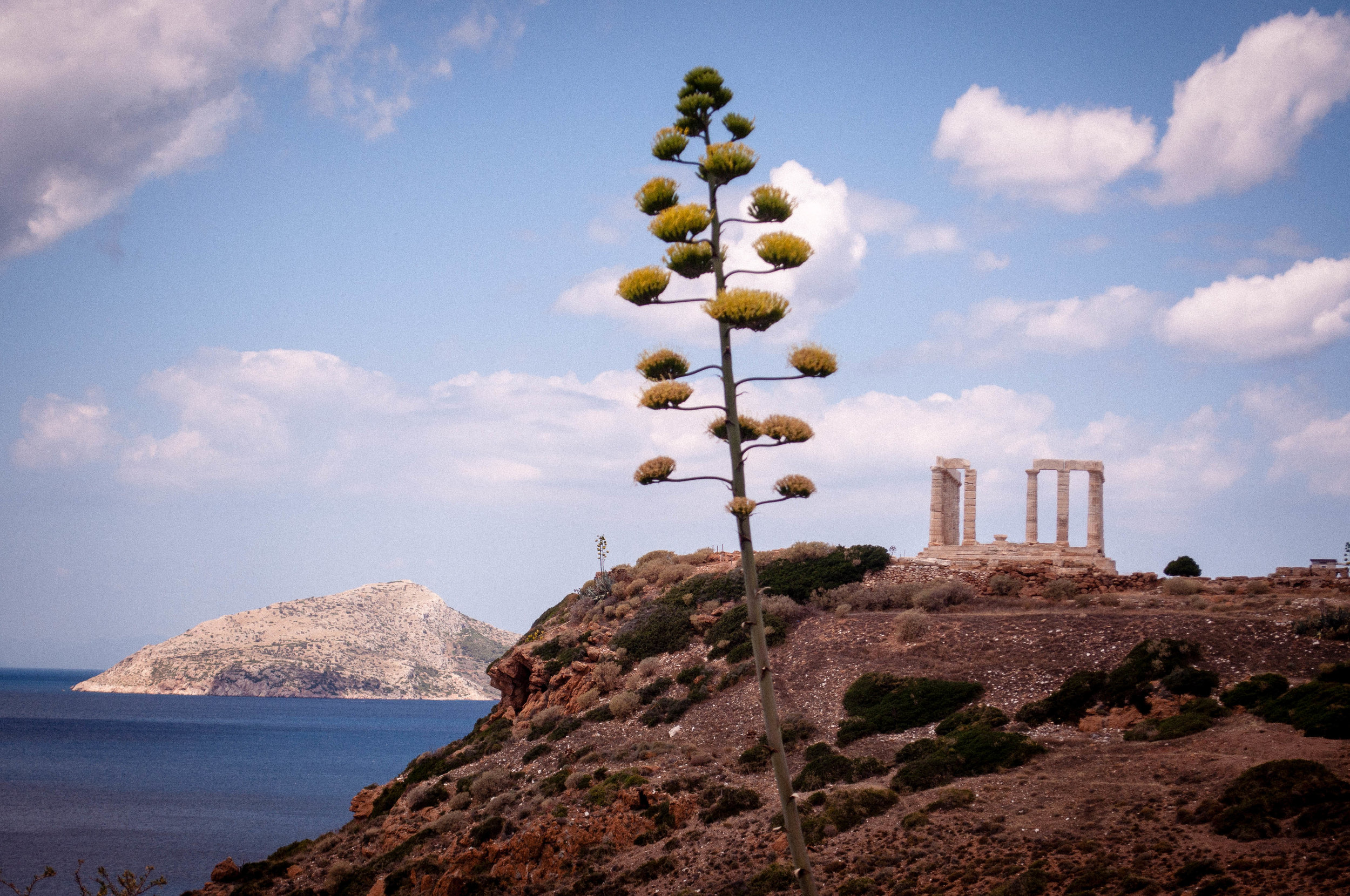 Blue sky with clouds, sea and creeks with desert-like vegetation.  On the foreground we see a tree and on the background we see the remaining ruins of the temple of Sounion