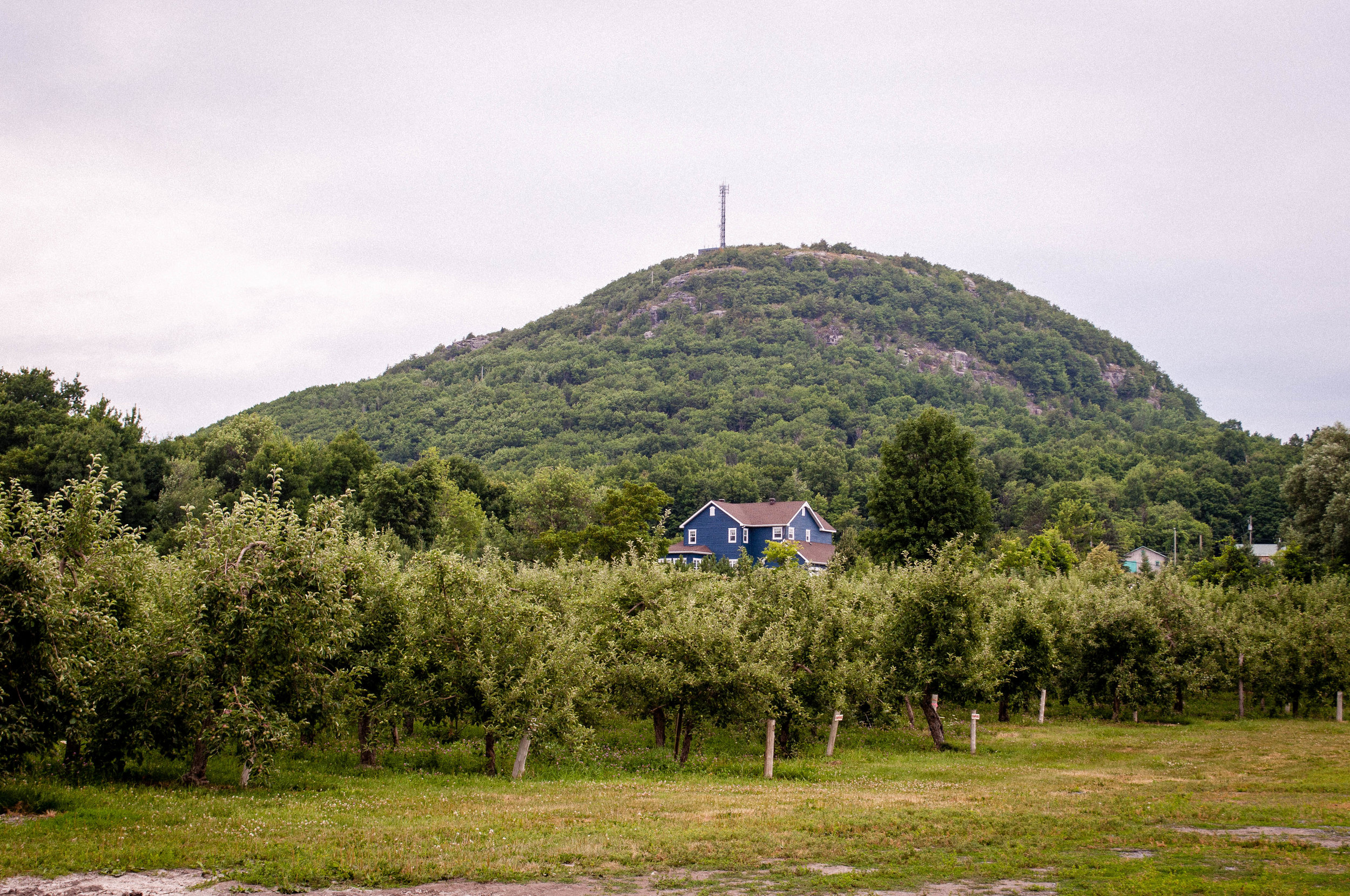 Monteregie Cider Route