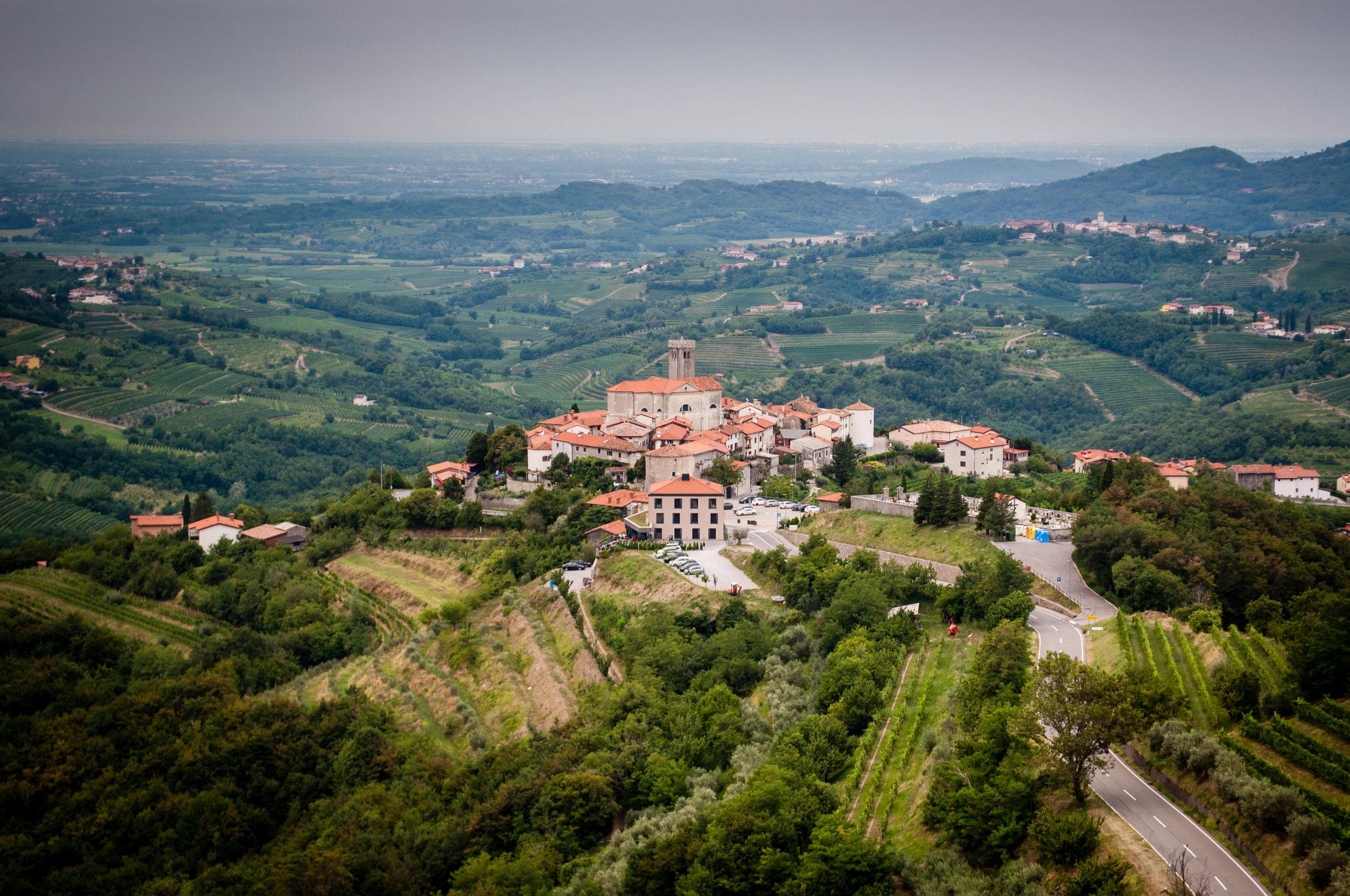 Exploring the Slovenia wine region