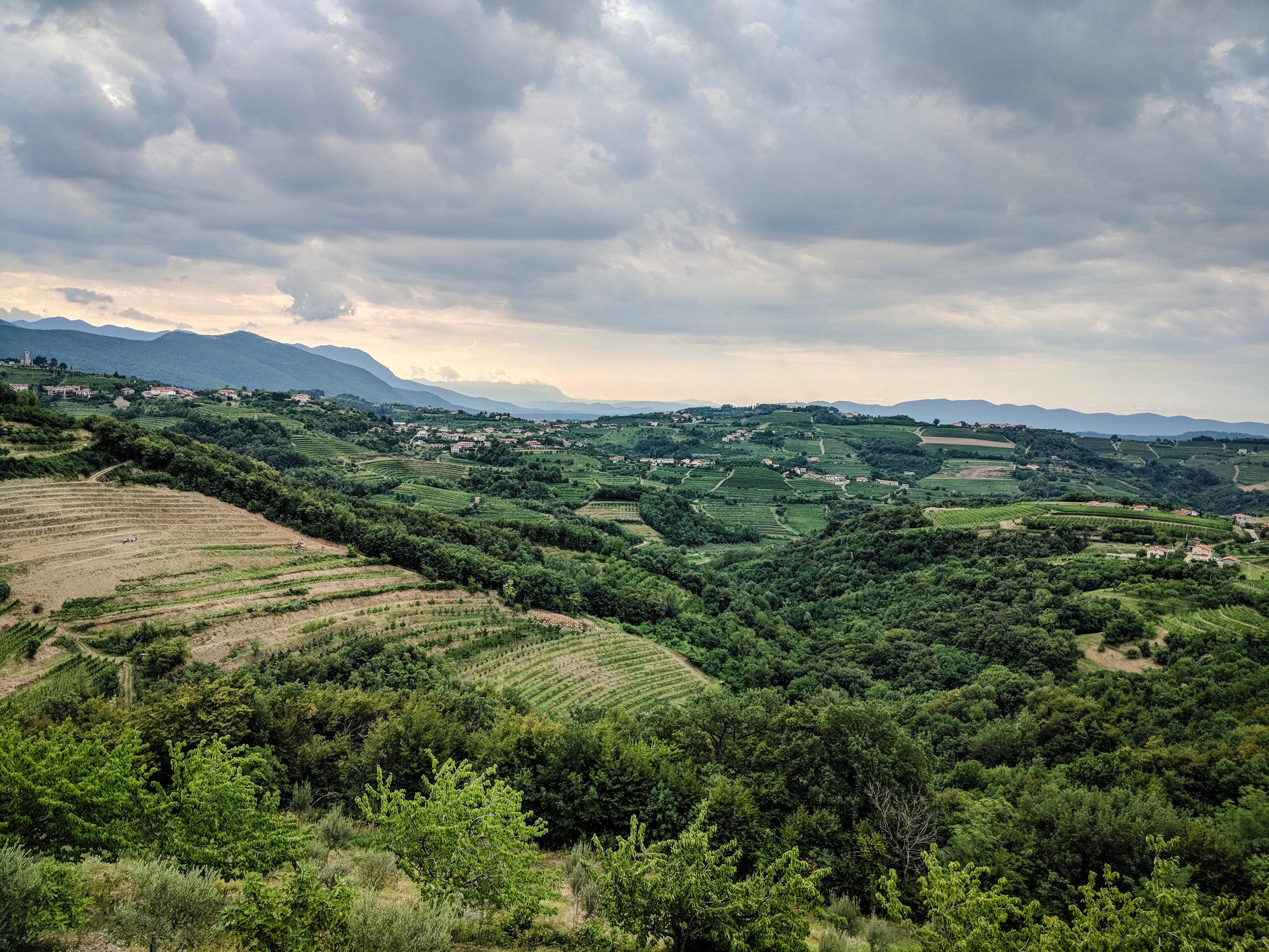 View from the San Martin Hotel located in Brda, the Slovenia wine region