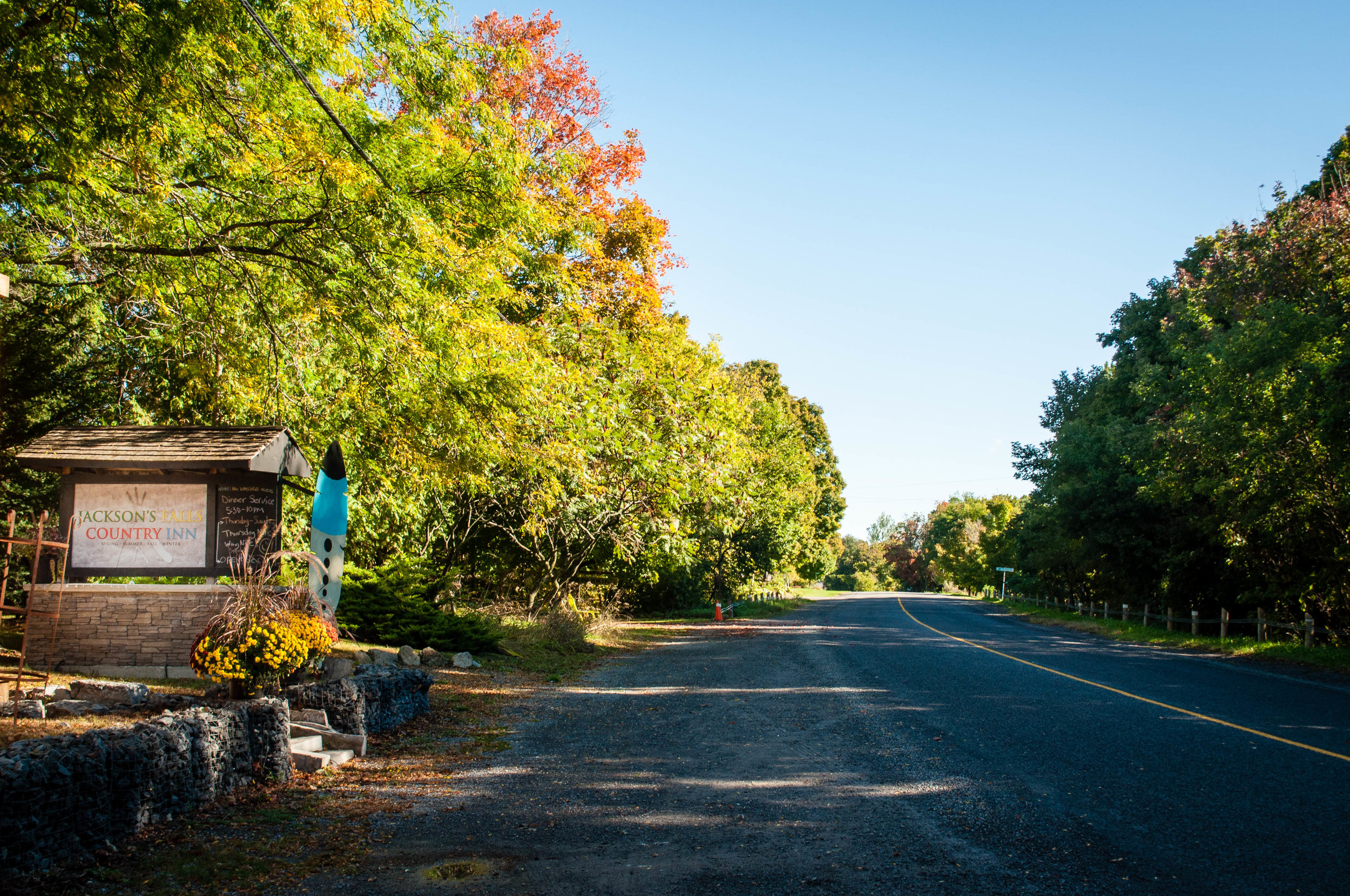 Fall colours on the road of Things to do in Prince Edward County