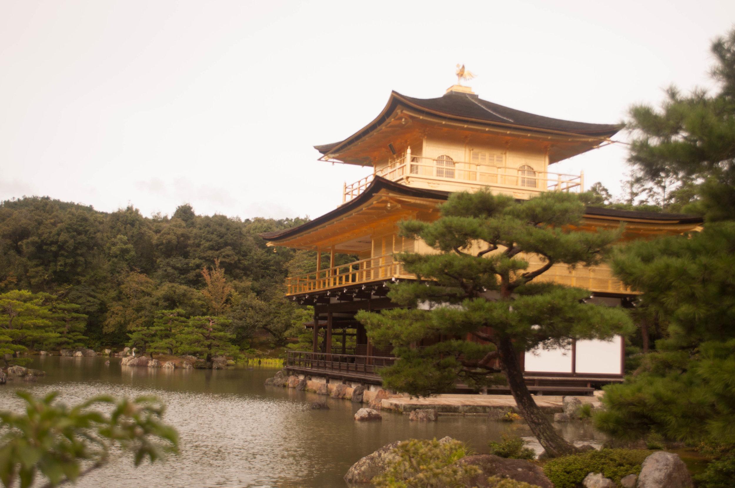 Golden Pavillion in Kyoto honeymoon in Japan