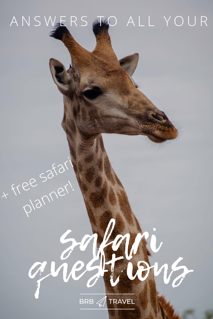 This guide answers all of your questions about going on a safari at Kruger Park, South Africa. This guide will help you plan your safari vacations in South Africa.  #safari #KrugerPark #SouthAfrica #AfricanSafari #Africa #travelguide