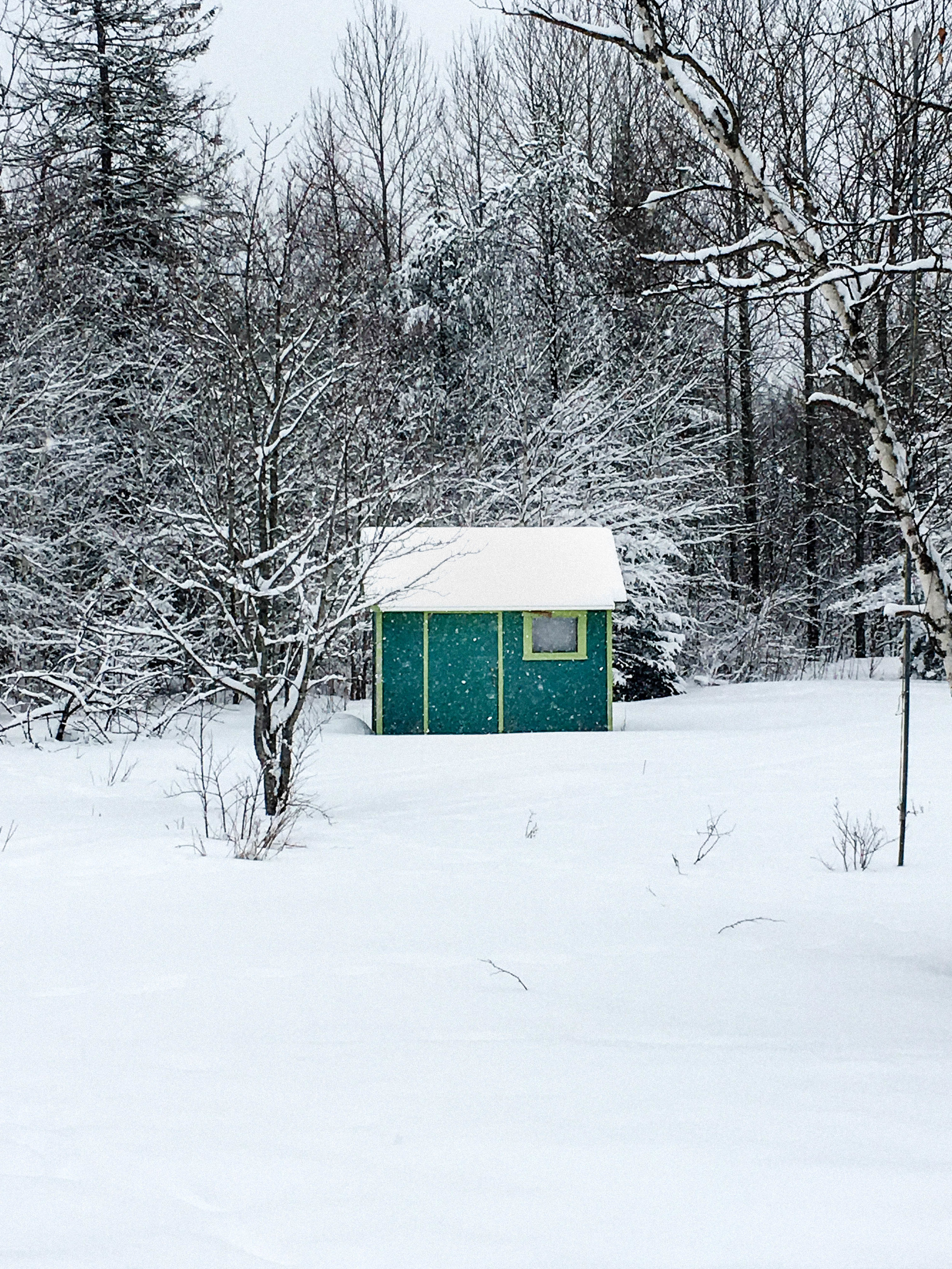Coaticook blue cabin in a snowstorm- trip from Montreal