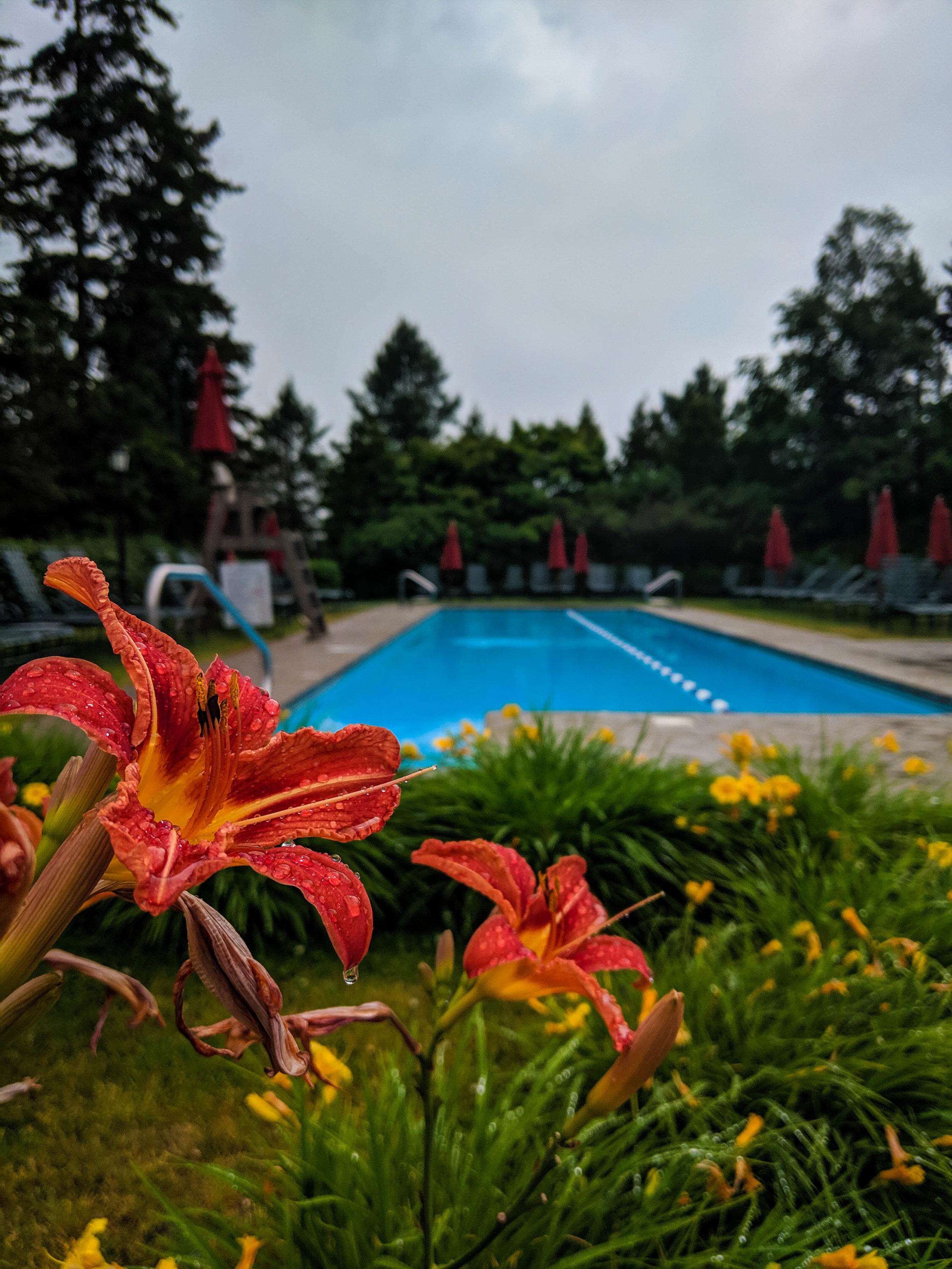Pool of the Fairmount Hotel, Le Manoir Richelieu