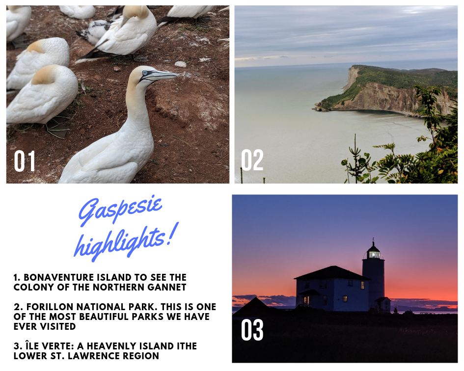 3 highlights of our road trip in Gaspésie: Binaventure island, Forillon Park and Ile Verte