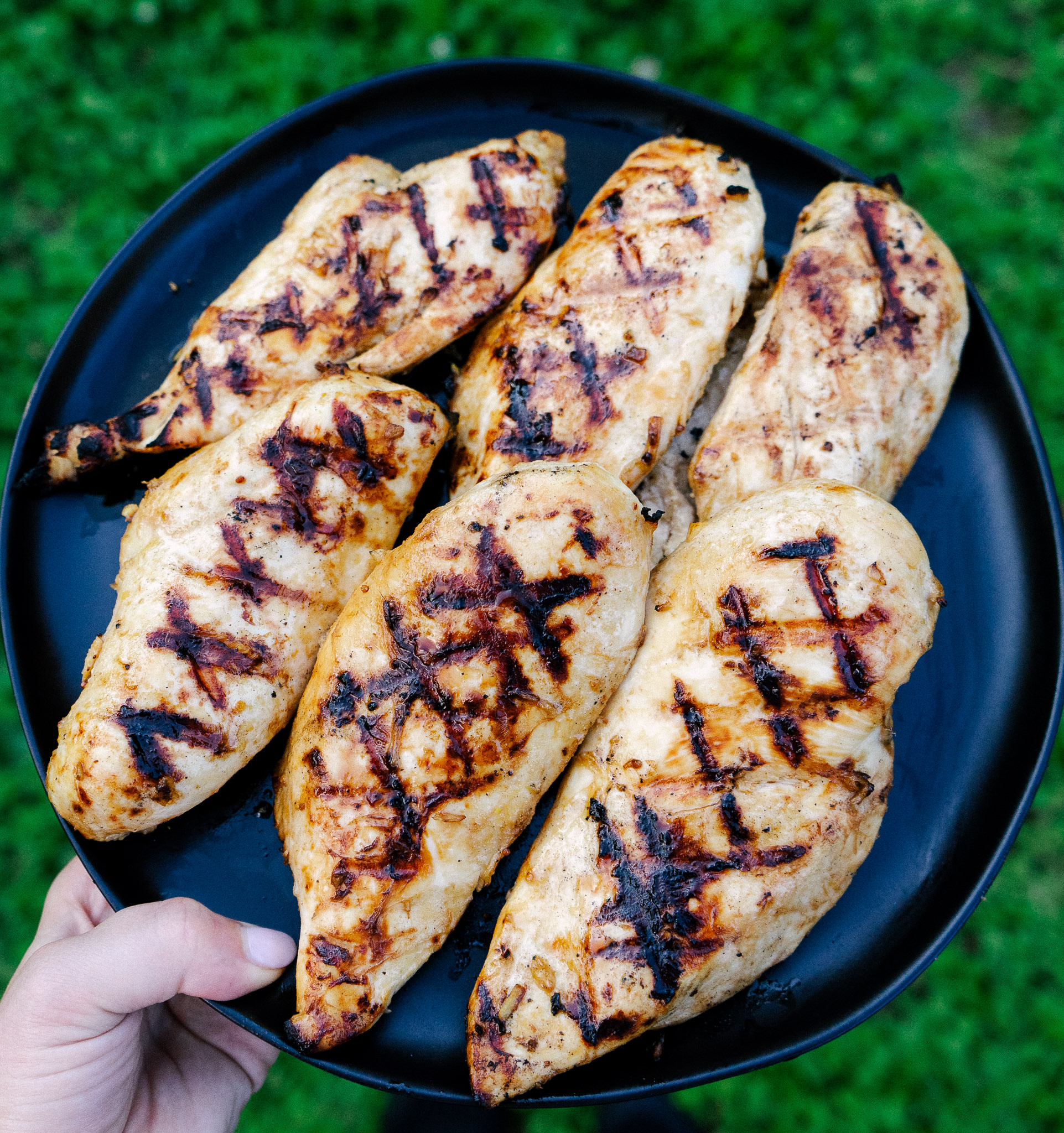 Grilled ginger lime chicken will make you rethink all your thoughts about chicken. This simple and healthy marinade packs the chicken with flavor. This whole30 chicken recipe is perfect for salads, sandwiches or a simple barbecue.