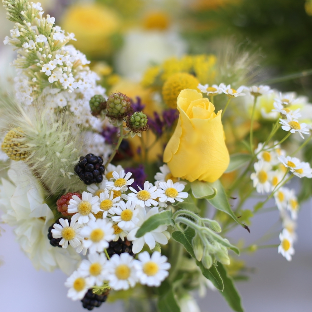 Local, sustainable flowers in Santa Cruz and Monterey counties for DIY bride or wedding flowers