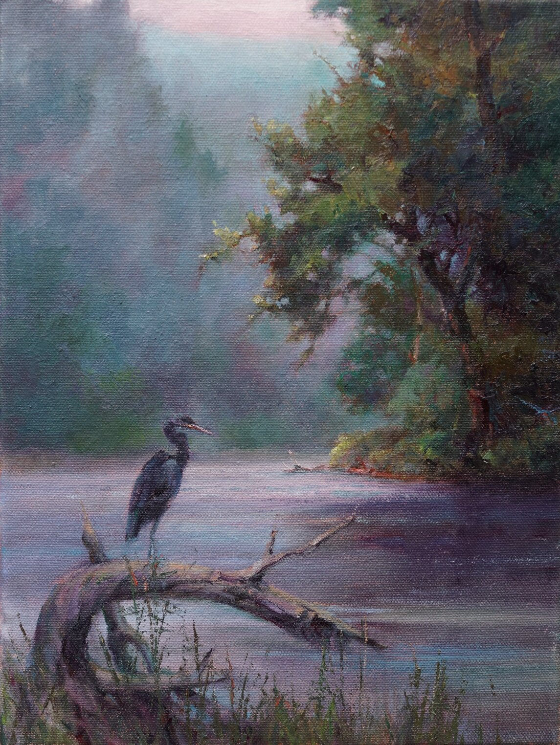 Morning Mist (On the Schoharie) 12x9 $650