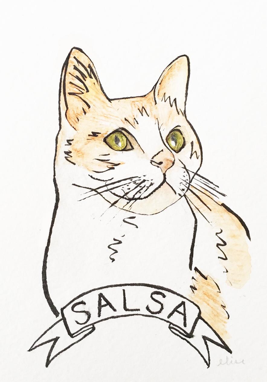 salsa-custom-cat-portrait-watercolor-drawing-elisemade-by-elise-lopez.jpg