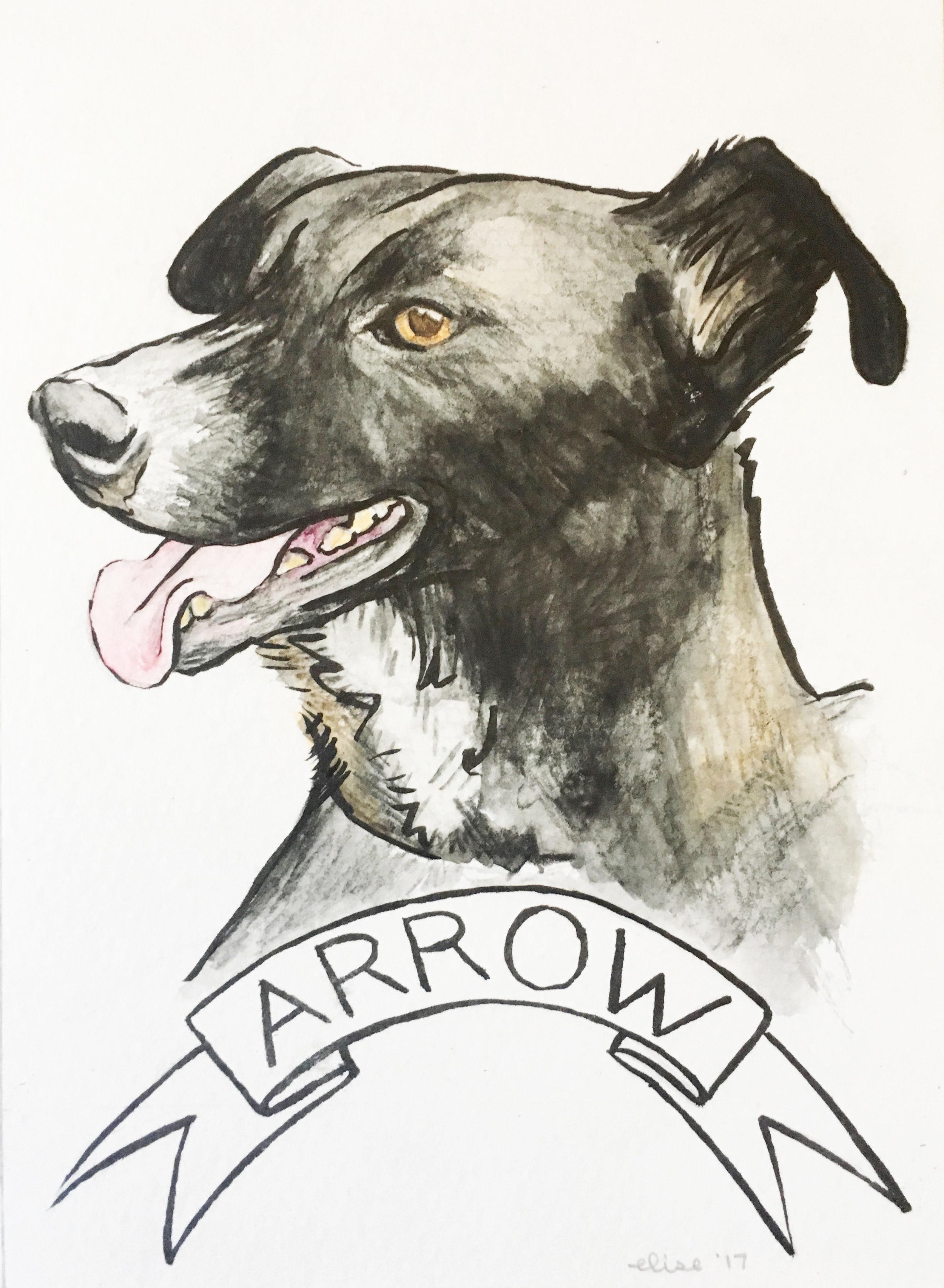 arrow-custom-watercolor-pet-portrait-drawing-elisemade-by-elise-lopez.jpg