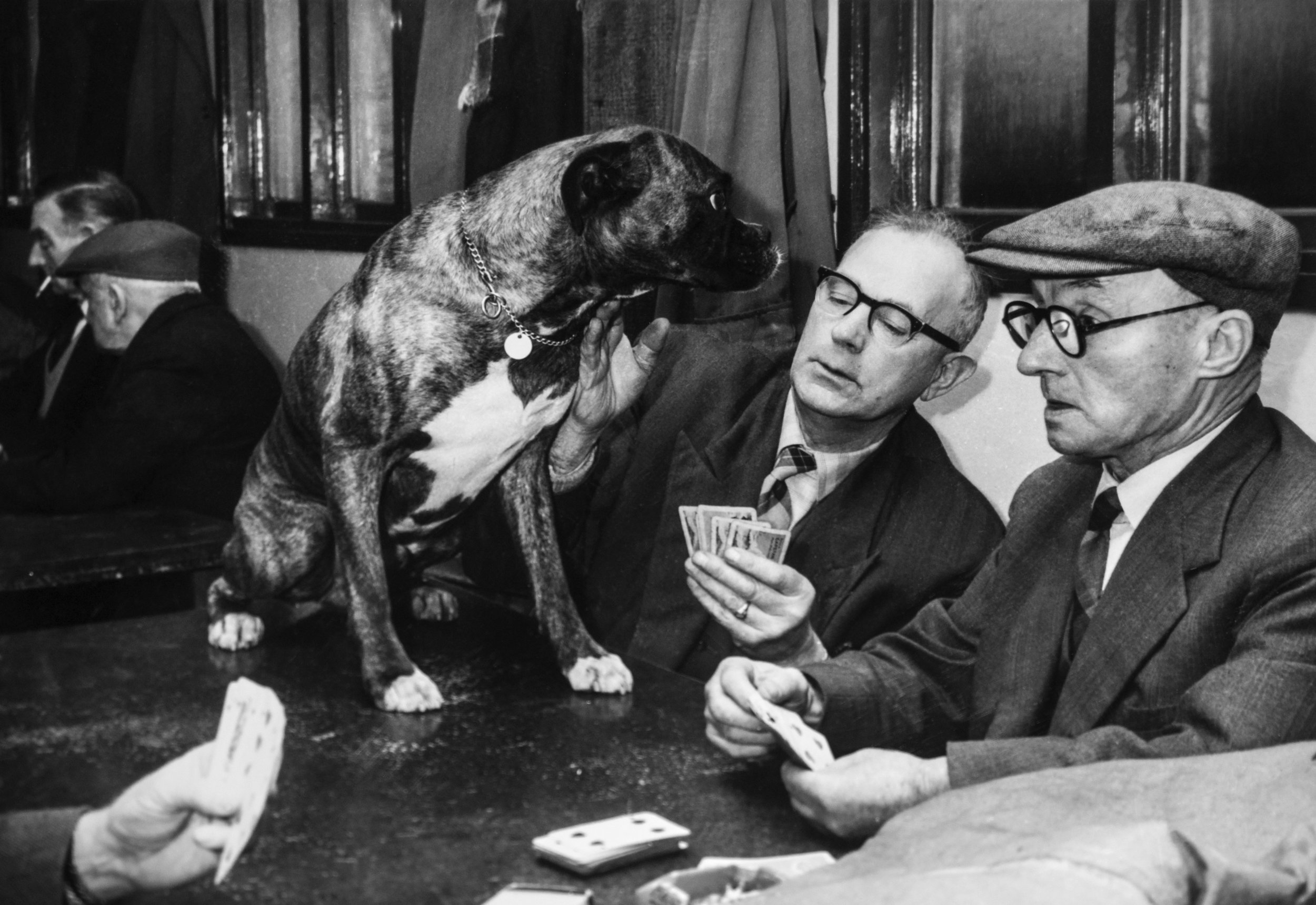 My Grandfather playing cards in the late 1950's with Skipper the dog