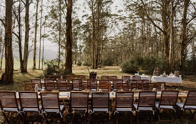 a Forest Setting . . @chrisdewet_weddings @wildernesstourism