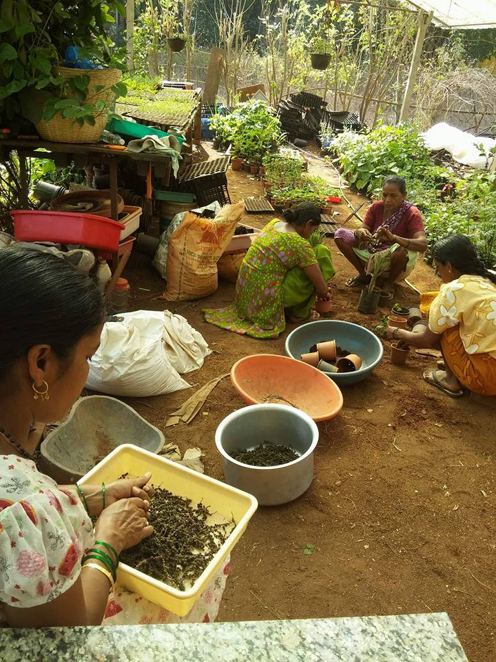 YogAct practicing permaculture techniques in India.