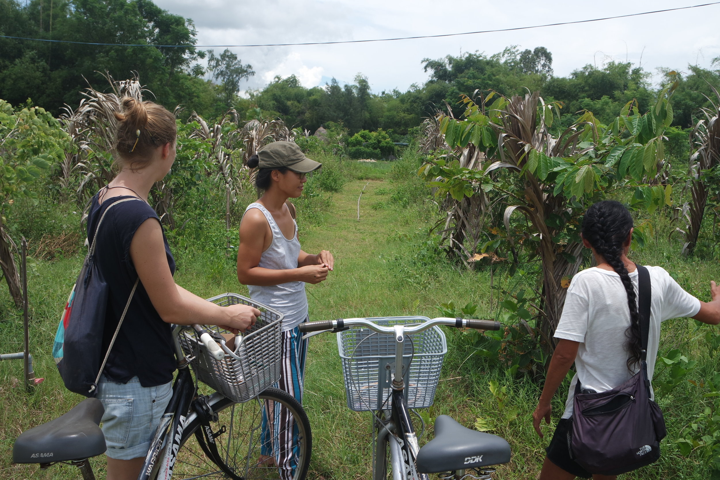 Triem Tay village and An Nhien farm are just a short bike ride away from Hoi An.