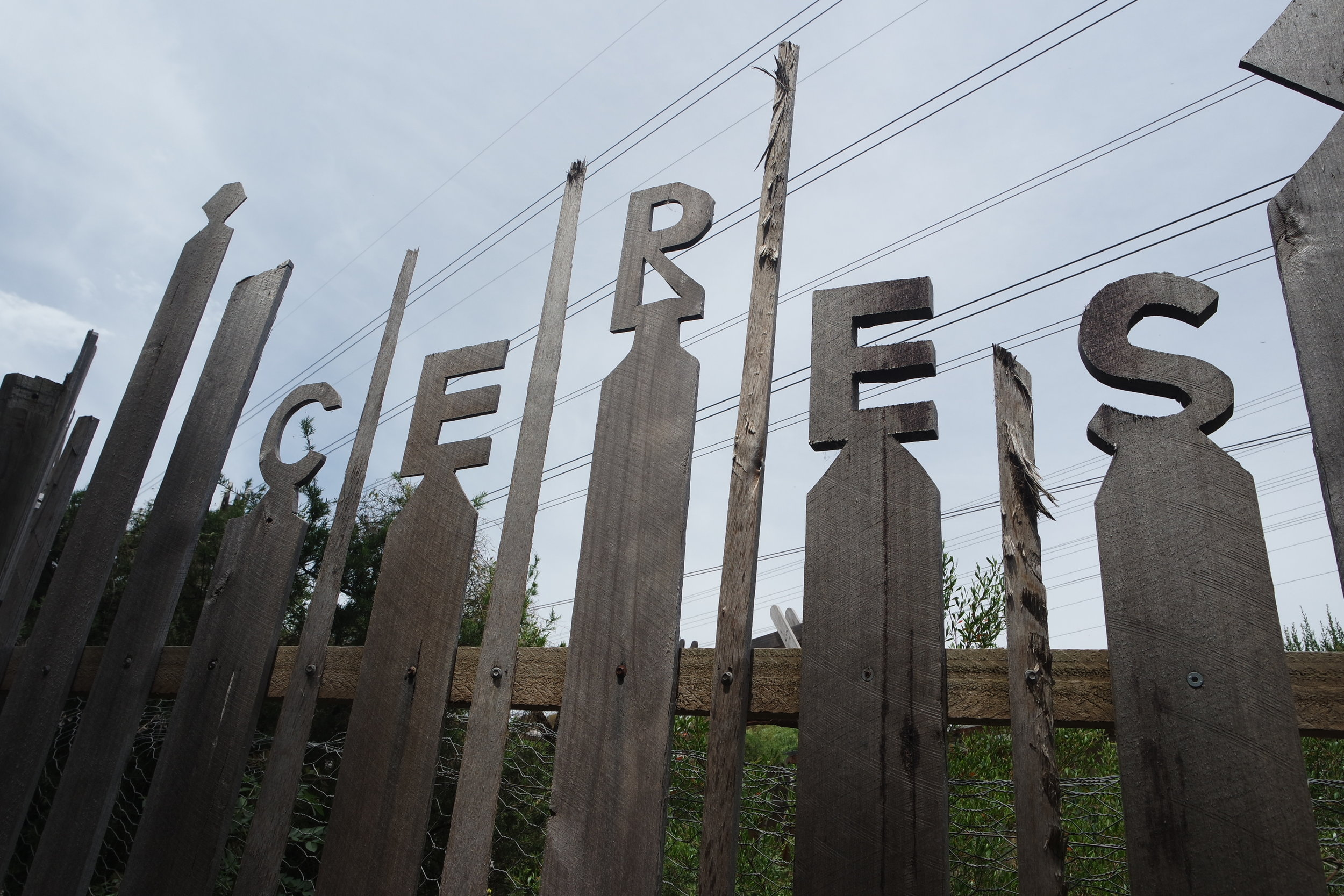 CERES - Centre for Education and Research in Environmental Strategies turned wasteland into habitat.