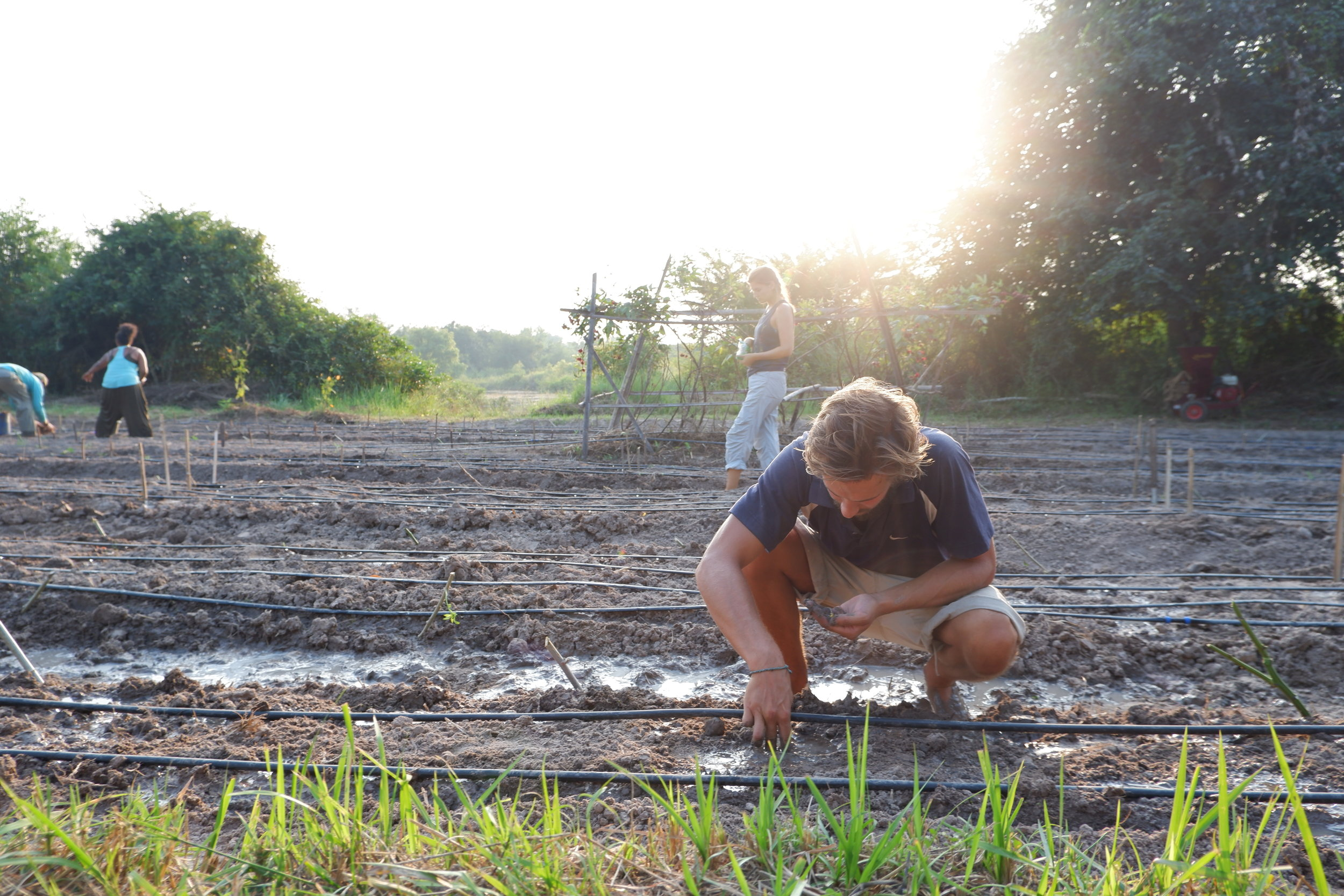 Planting seeds on large-scale garden beds.  Photo: Julien De Backer