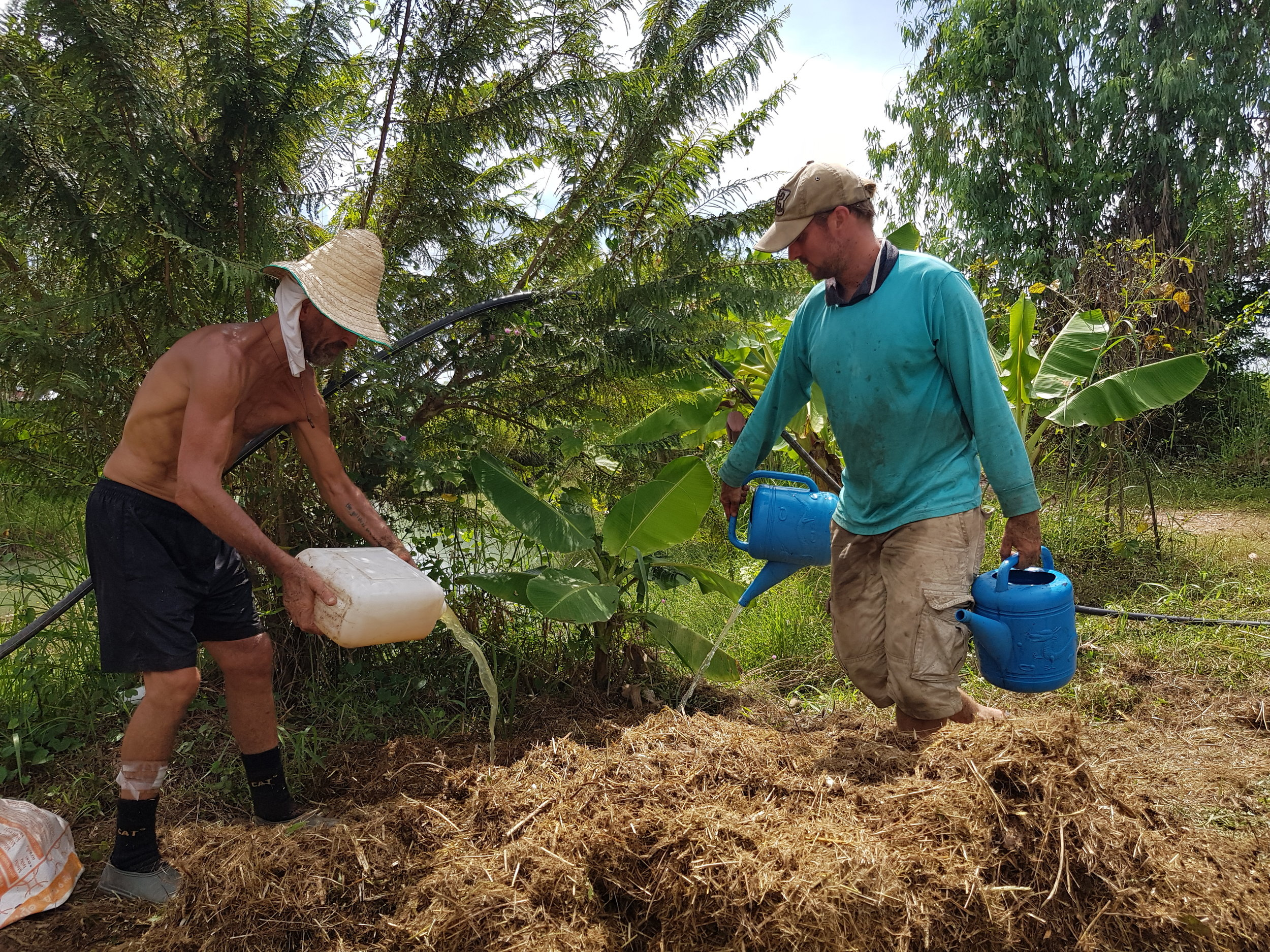 Watering the compost mix with human urine and water.  Photo: Julien De Backer