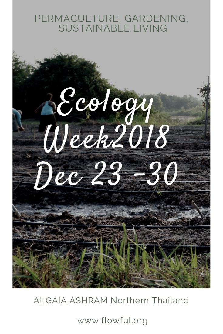 ecology week 2018 Gaia Ashram Thailand